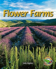Flower Farms - 9780170116107