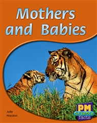 Mothers and Babies - 9780170123952