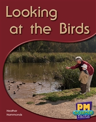 Looking at the Birds - 9780170124003