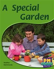 A Special Garden - 9780170124058
