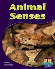 Animal Senses - 9780170124072