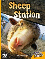 Sheep Station - 9780170125215