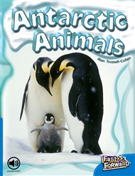 Antarctic Animals - 9780170125321