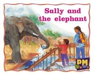 Sally and the elephant - 9780170128391