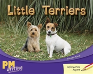 Little Terriers - 9780170132183