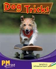 Dog Tricks - 9780170132664