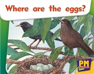 Where are the eggs? - 9780170133760