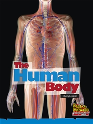 The Human Body - 9780170179348