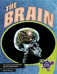 The Brain - 9780170183833