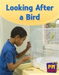 Looking After a Bird - 9780170194112