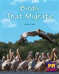 Birds That Migrate - 9780170194297
