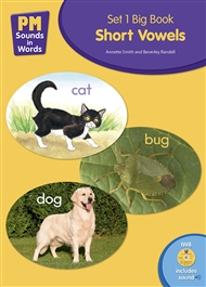 PM Sounds in Words Set 1 Big Book + IWB Software - 9780170218030