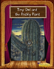 Little Plays: Tiny Owl and the Prickly Plant - 9780170228770