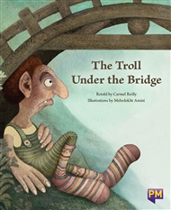 The Troll Under the Bridge - 9780170266260