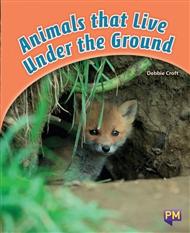 Animals that Live Under the Ground - 9780170266277