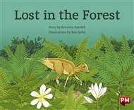Lost in the Forest - 9780170328265