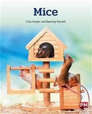 Mice - 9780170328319