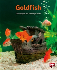 Goldfish - 9780170328333
