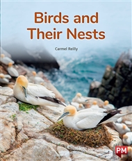 Birds and Their Nests - 9780170328364