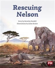 Rescuing Nelson - 9780170328449