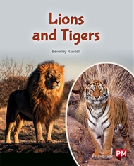 Lions and Tigers - 9780170328654