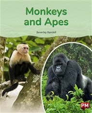 Monkeys and Apes - 9780170328661