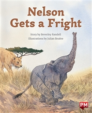 Nelson Gets a Fright - 9780170328685