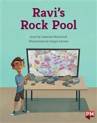 Ravi's Rockpool - 9780170328791