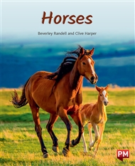 Horses - 9780170328913