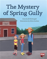 The Mystery of Spring Gully - 9780170329033