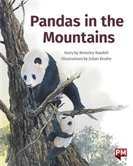 Pandas in the Mountains - 9780170329101