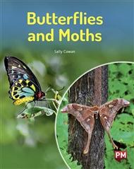 Butterflies and Moths - 9780170329156