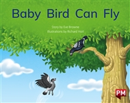 Baby Bird Can Fly - 9780170329576