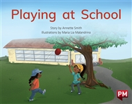 Playing at School - 9780170329668