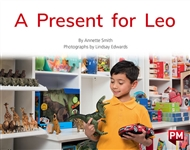 A Present for Leo - 9780170329811
