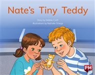 Nate's Tiny Teddy - 9780170329828
