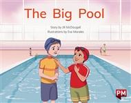 The Big Pool - 9780170329941