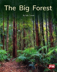 The Big Forest - 9780170329958