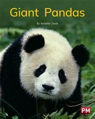 Giant Pandas - 9780170330008