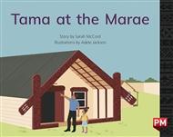 Tama at the Marae - 9780170330244