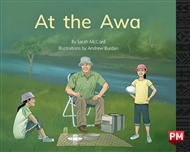 At the Awa - 9780170330299