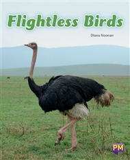 Flightless Birds - 9780170349932