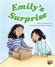 Emily's Surprise - 9780170354349
