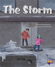 The Storm - 9780170354363