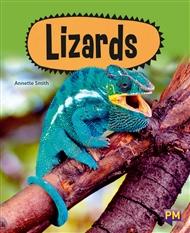 Lizards - 9780170354431