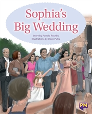 Sophia's Big Wedding - 9780170358729
