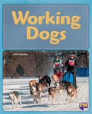 Working Dogs - 9780170358750