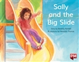 Sally and the Big Slide
