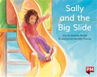 Sally and the Big Slide - 9780170387200