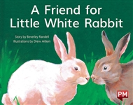 A Friend for Little White Rabbit - 9780170388757